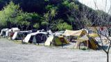 나우 캠핑장 관광농원 작은 사진