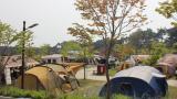 천수만권역 상황 오토캠핑장 작은 사진