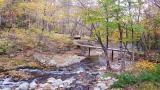삼봉 자연휴양림 야영장 작은 사진