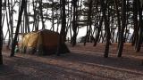 몽산포 오토캠핑장 2구역 작은 사진