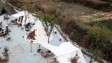 자두마을 캠핑장 작은 사진