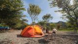 뉴프라도 캠핑장 작은 사진